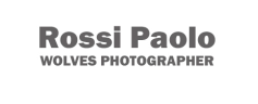 Paolo Rossi Photographer